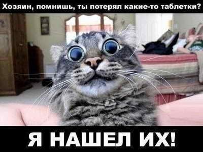 0UQSZ0vydw0_новый размер