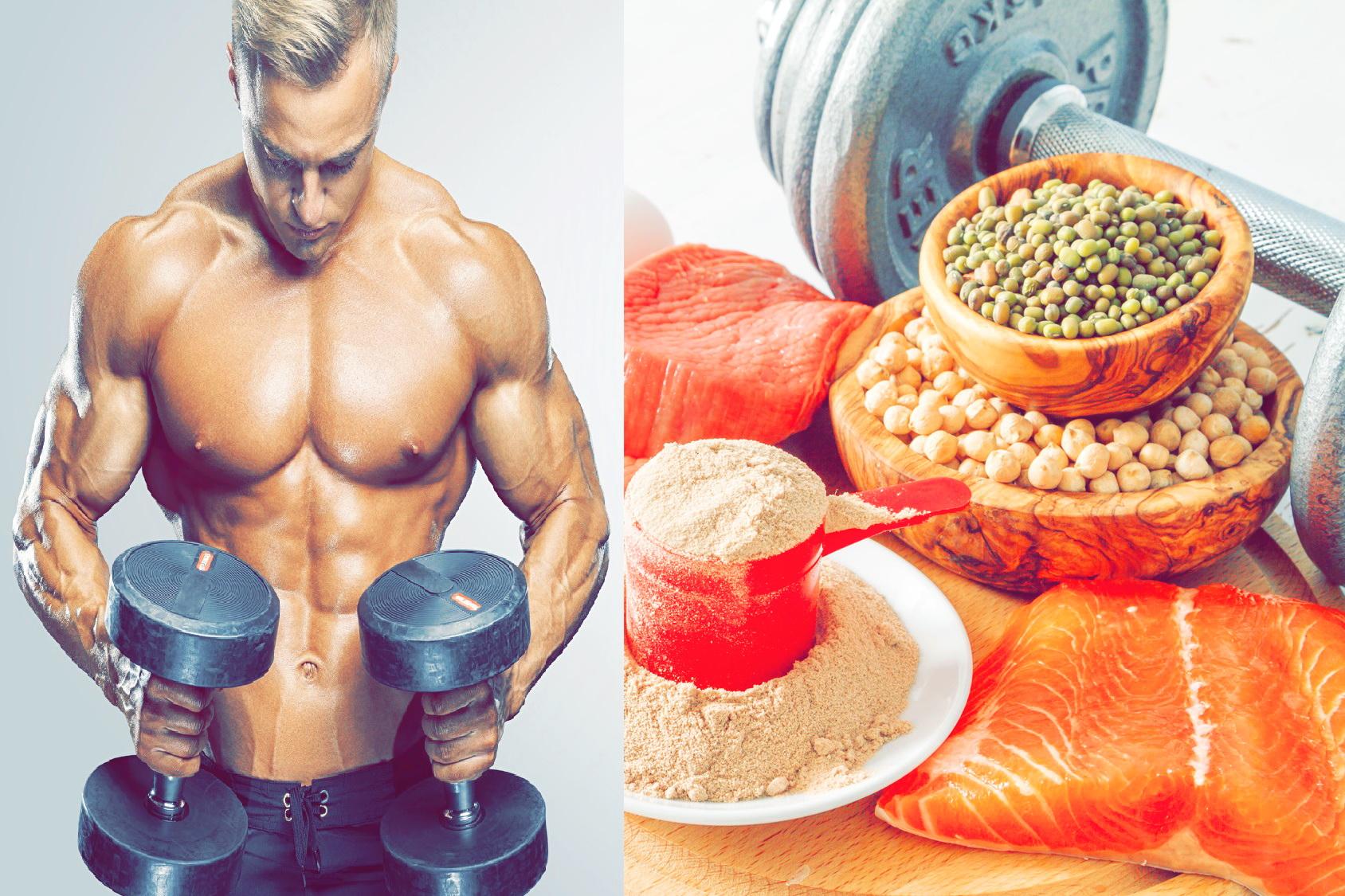 Мышцы Помогают Похудеть
